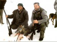 Grupni lov na vuka