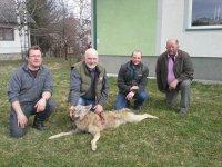 Danski lovci u Sjenici 2014. godine